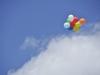 Der Aufstieg in den blauen Himmel gelingt! (© Bildnachweis: de Maddalena)